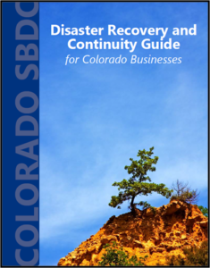 Disaster Recovery and Continuity Guide